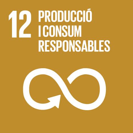 Serveis - Objectius Desenvolupament Sostenible - Producció i consum responsables
