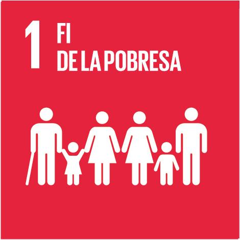 Serveis - Objectius Desenvolupament Sostenible - Fi de la pobresa