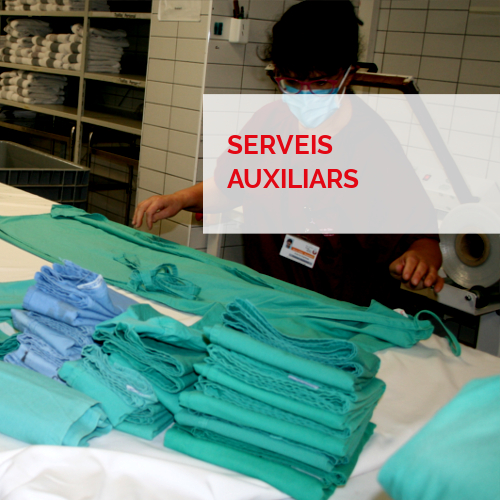 Serveis integrals - Serveis auxiliars